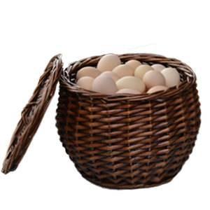 Rattan Ablagekorb Weidenkorb Bambus Eierkorb und Obstkorb
